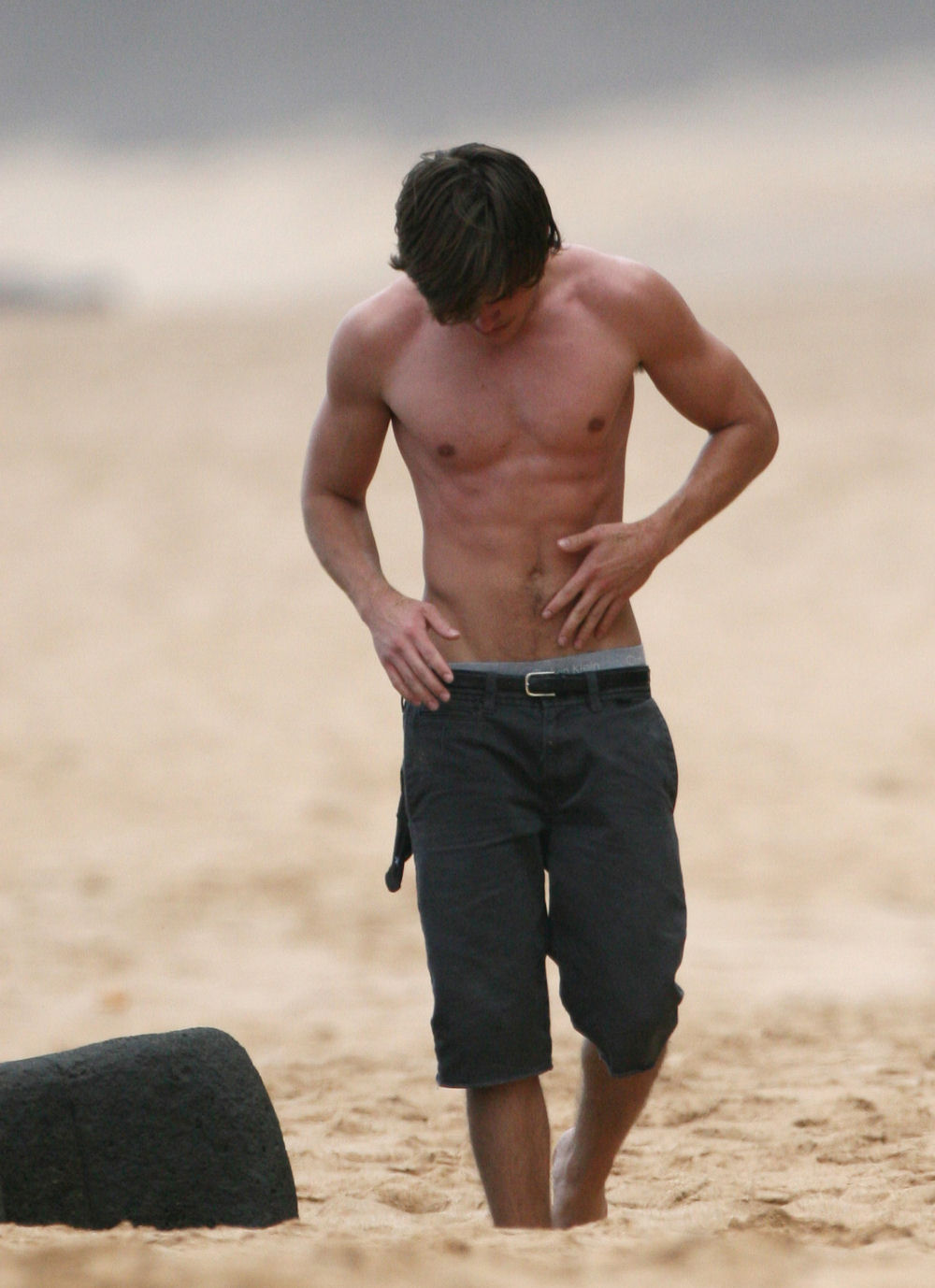 http://aviewofthec.files.wordpress.com/2008/10/zac-efron-beach.jpg
